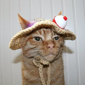 HAND CRAFTED Crochet Gone Fishin Dog Cat Hat